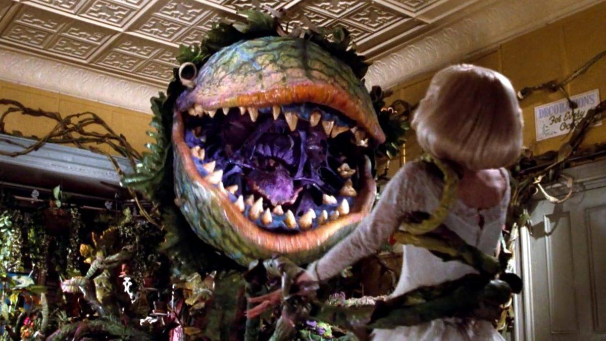 Taron Egerton se acerca a la remake de La Tiendita del Horror