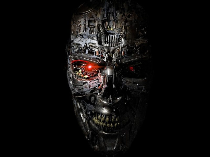 Terminator prepara una serie animada