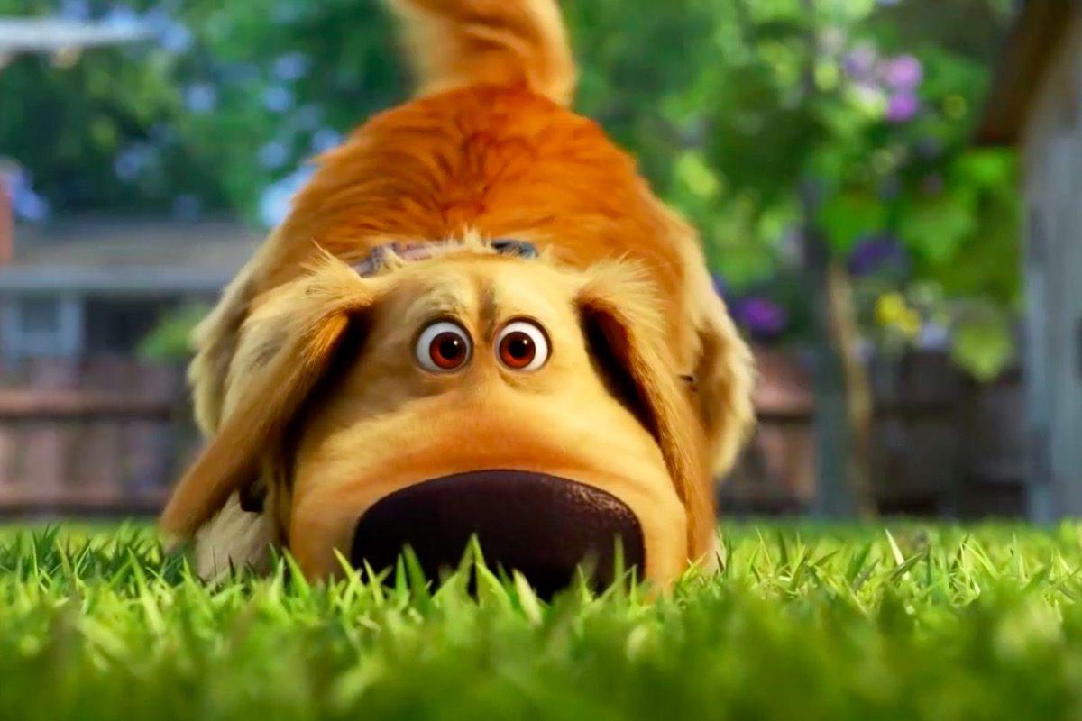 Dug Days: Disney Plus presenta el trailer del spin-off de Up