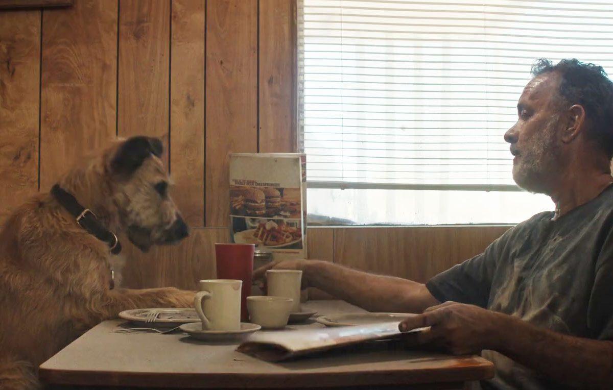 Primer tráiler de Finch, la película post-apocalíptica con Tom Hanks del director de Game of Thrones